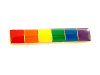 NEW- Rainbow Bar Lapel