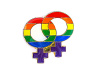 Rainbow Female Lapel Pin